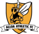 Scores Alloa Athletic